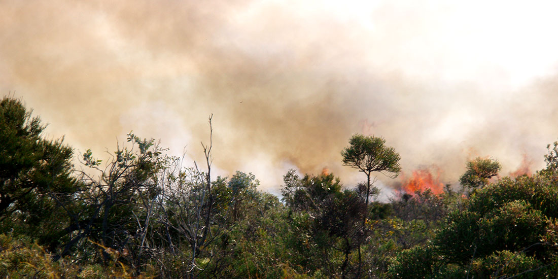 Bushfire and Risk Management Planning Perth, Western Australia