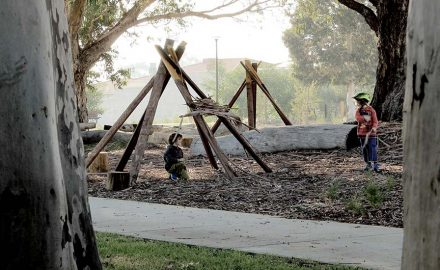 Ecoscape Nominated for Two National Landscape Architecture Awards