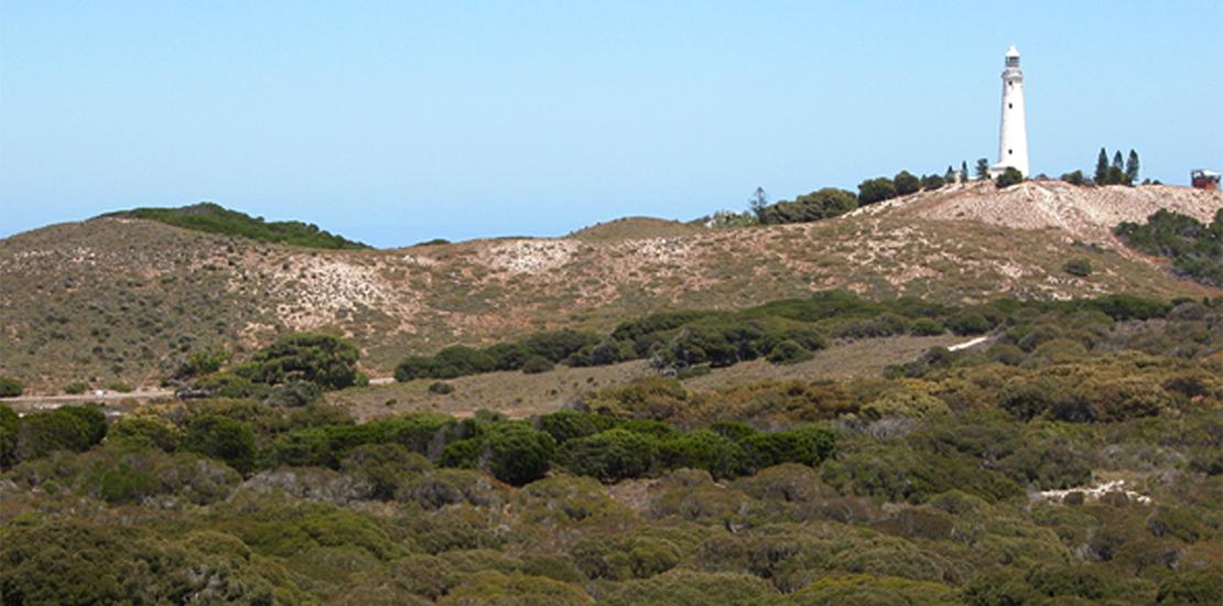 Targeted Spider Survey Weld Range Western Australia Trap Door Spider Nest Gascoyne