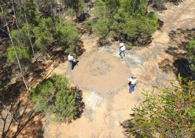 Covalent Lithium Malleefowl Monitoring
