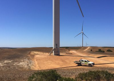 Badgingarra Wind Farm Cockatoo & Bird Monitoring